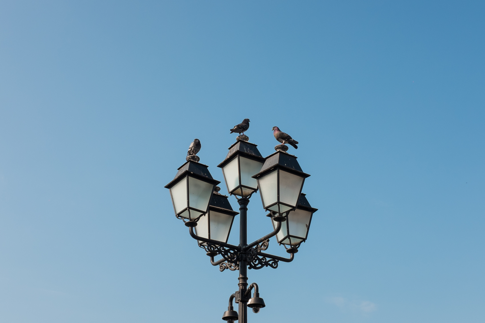 Where my Eyes Go | Windsor, Ontario Lifestyle Photographer | Timisoara, Romania
